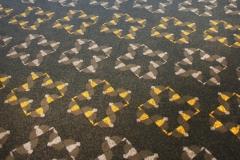Artistic Flooring | Custom Carpet Design | Doomben Racecourse